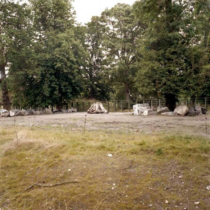 http://www.davidoshaughnessy.com/files/gimgs/th-8_zoo 34 DUBLIN LAB_v2.jpg